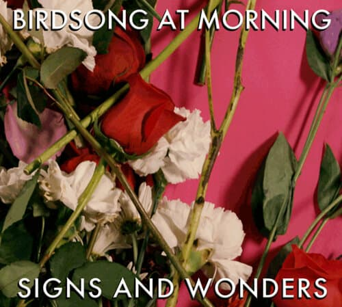 Birdsong At Morning - Signs and Wonders Cover